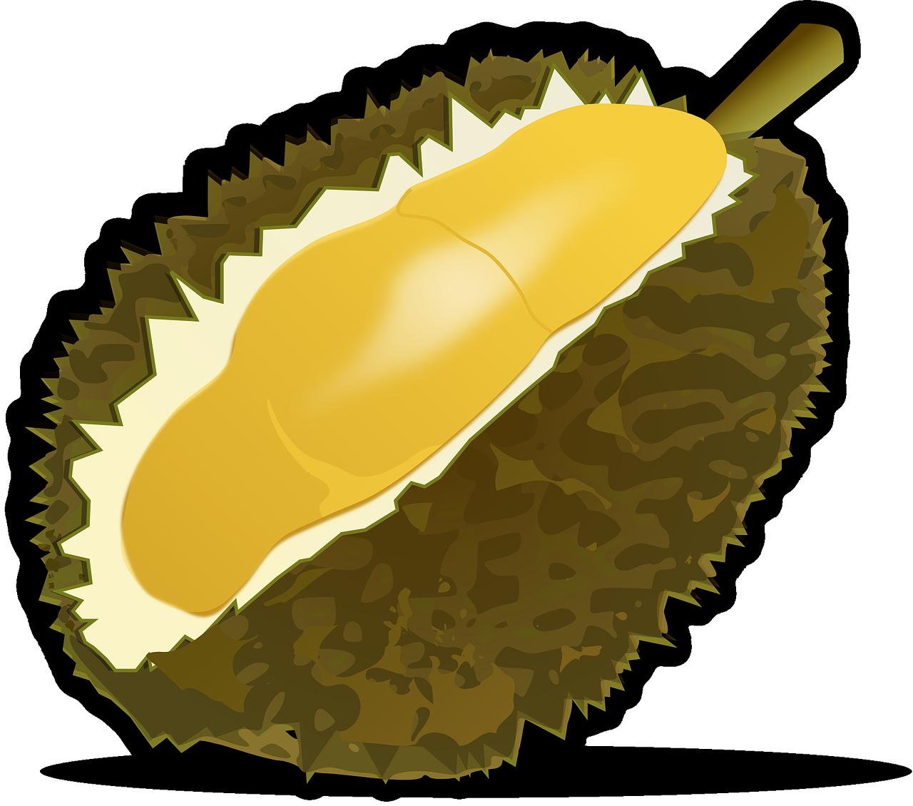 Bentong Durian Malaysia